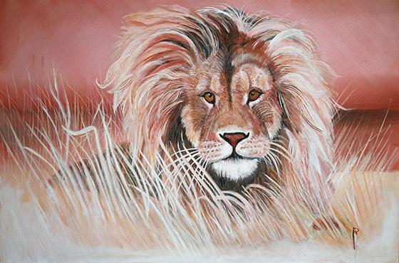 WEB_FA_ID511604-Majestic-Lion-Richard-Lewis.jpg