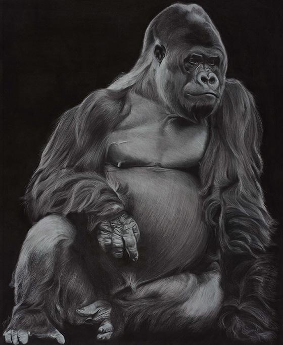 WEB_FA_ID512925-Gorilla-Brooke-Walker.jpg