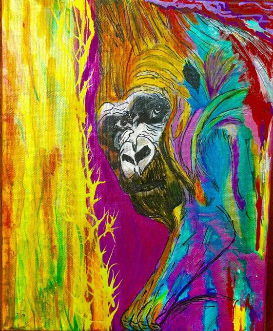 WEB_FA_ID519713-Silver-Back-Gorilla-Gloria-Olguin.jpg