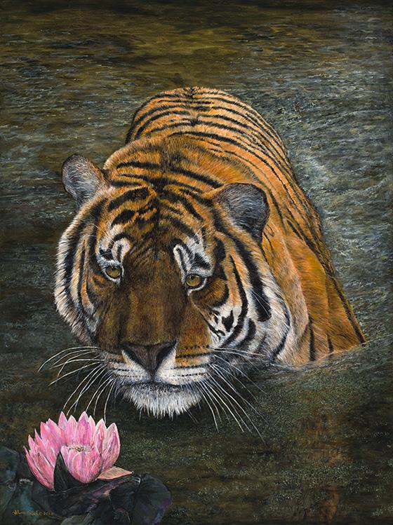 WEB_FA_ID519939-Eye-of-the-tiger-Ilene-Reed.jpg