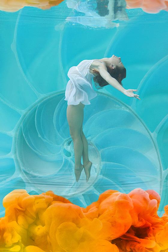 WEB_P_ID520374-Nautilus-Suzanne-Barton.jpg