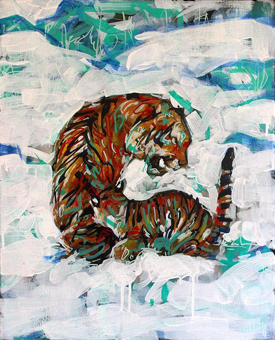 WEB_FA_ID520536-Bengal-Tigers-Jordan-Shapot.jpg
