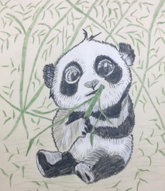 WEB_YA_ID520569-Babie-Panda-Isamar-Bonilla.jpg