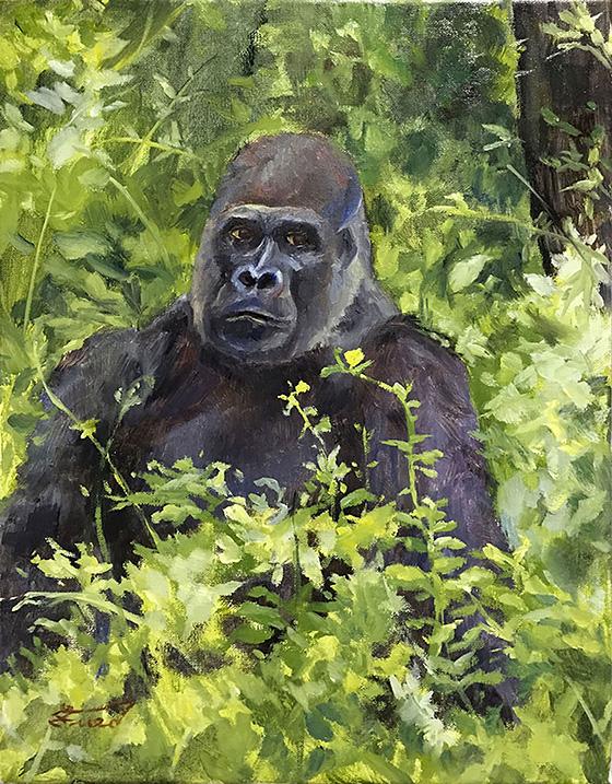 WEB_FA_ID520688-Gorilla-Sitting-Samantha-Fried.jpg