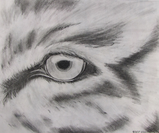 WEB_YA_ID520878-Eye-of-the-Tiger-Robert-Kirschke.jpg