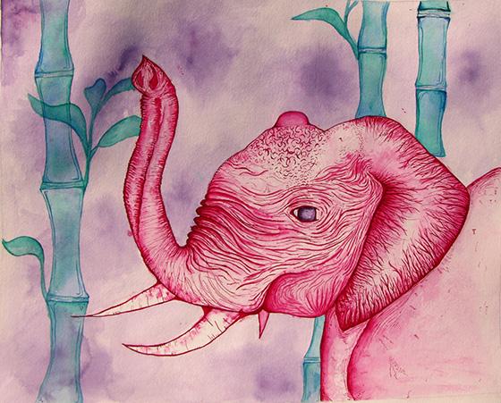 WEB_YA_ID520890-Mr.-Elephant-the-Bachelor-Caylee-Shelton.jpg