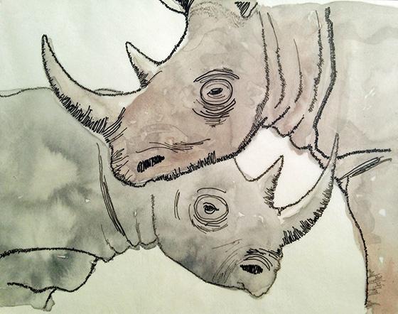 WEB_FA_ID560384-Black-Rhino-Carol-Bloomgarden.jpg