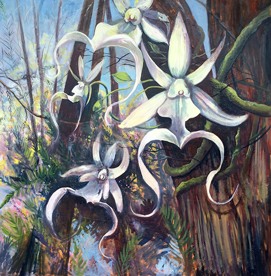 Ghost Orchids © 2018 Patricia Cummins | All Rights Reserved