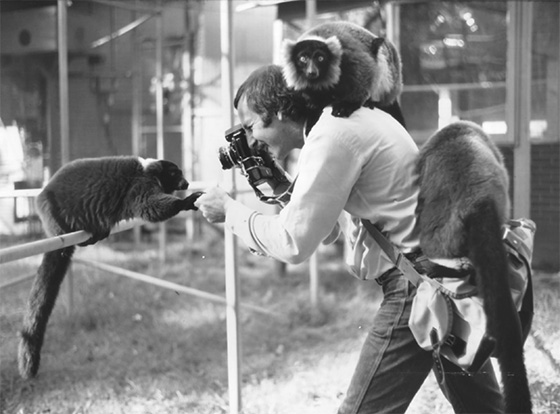 Ted Schiffman with Variegated Lemurs at the Duke University Primate Center prior to his assignment in Madagascar for GEO magazine