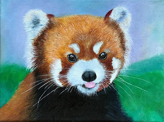 Red panda © 2018 Jacqueline Wang | All Rights Reserved