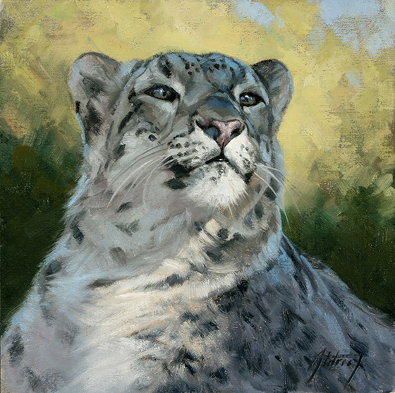 Snow Leopard Portrait © 2018 Edward Aldrich | All Rights Reserved