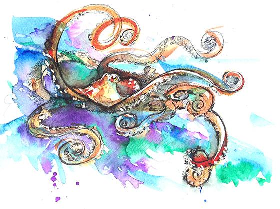 Octopus © 2018 Judith Bradford   All Rights Reserved