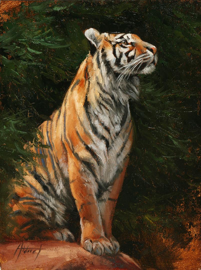 Sumatran © 2018 Edward Aldrich | All Rights Reserved