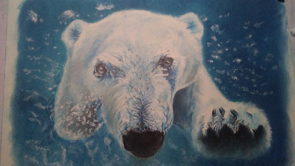 Come On In... The Water'S Fine © 2018 Debra Herndon | All Rights Reserved
