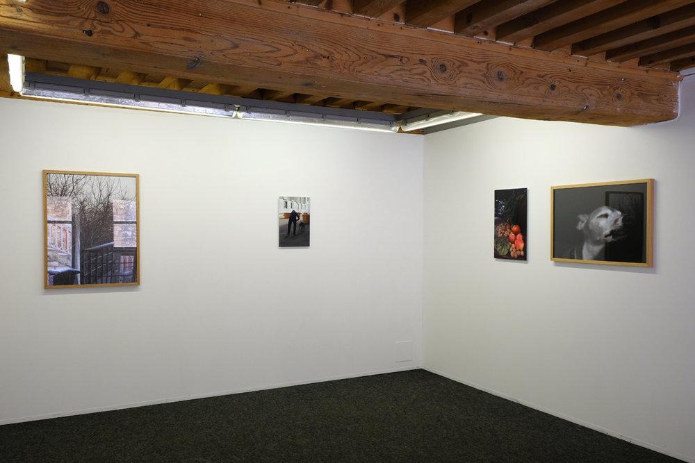 """""""Guillaume Janot, Pascal Poulain"""", galerie Le Bleu Du Ciel, Lyon, 2016."""
