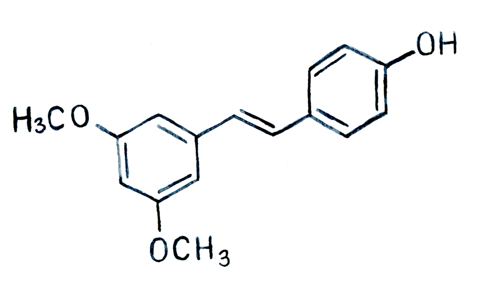Structure-1-Pterostilbene.png