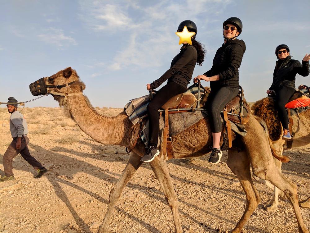 Camels negev 2.png