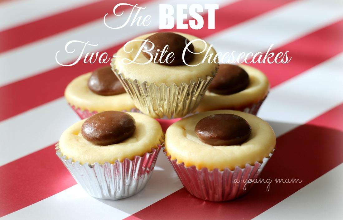 easy cheesecakes mini cheesecake cheesecake bites