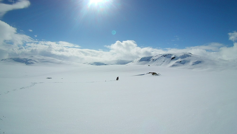Liten jente alene med mektige fjell