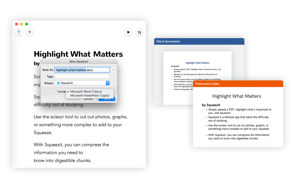 Export - The squeeze is a pretty powerful format. From what you have highlighted you can make: a Word Doc, a PowerPoint and a Mind with 0 additional effort.Maybe a tagline:You have created a squeeze, now use its power (maybe even in the app the narrative should be done that way)