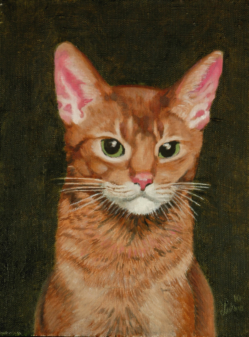Abyssinian I