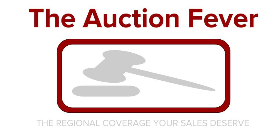 The Auction Fever
