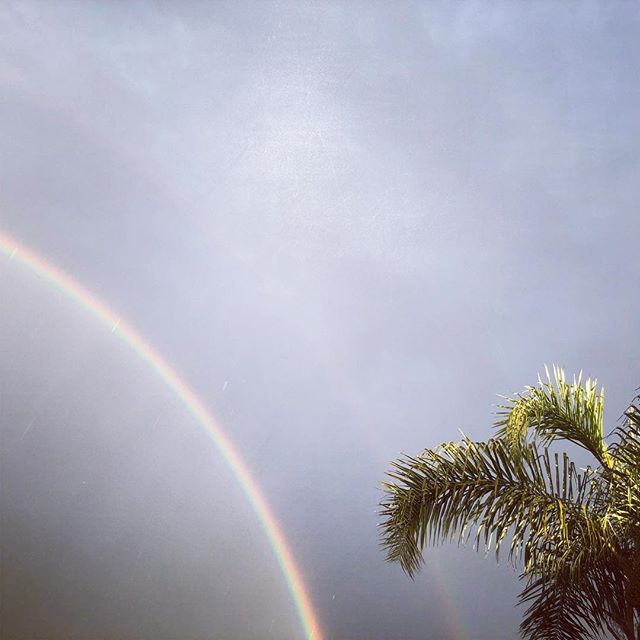 Happy Hump Day! #californialove 🌈 🌴