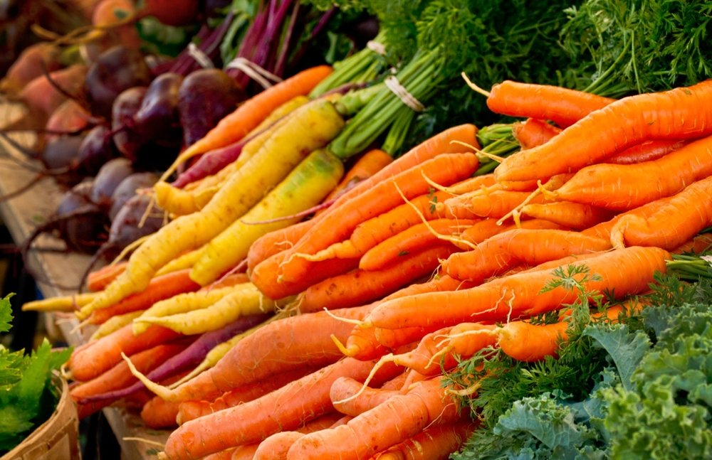 Carrots Roots CO.jpeg
