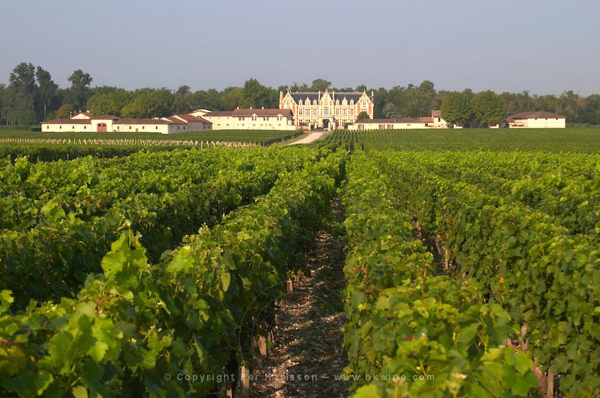 Vineyard. Chateau Cantenac Brown, Margaux, Medoc, Bordeaux, France
