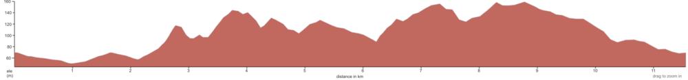 Dungog Trail 14km