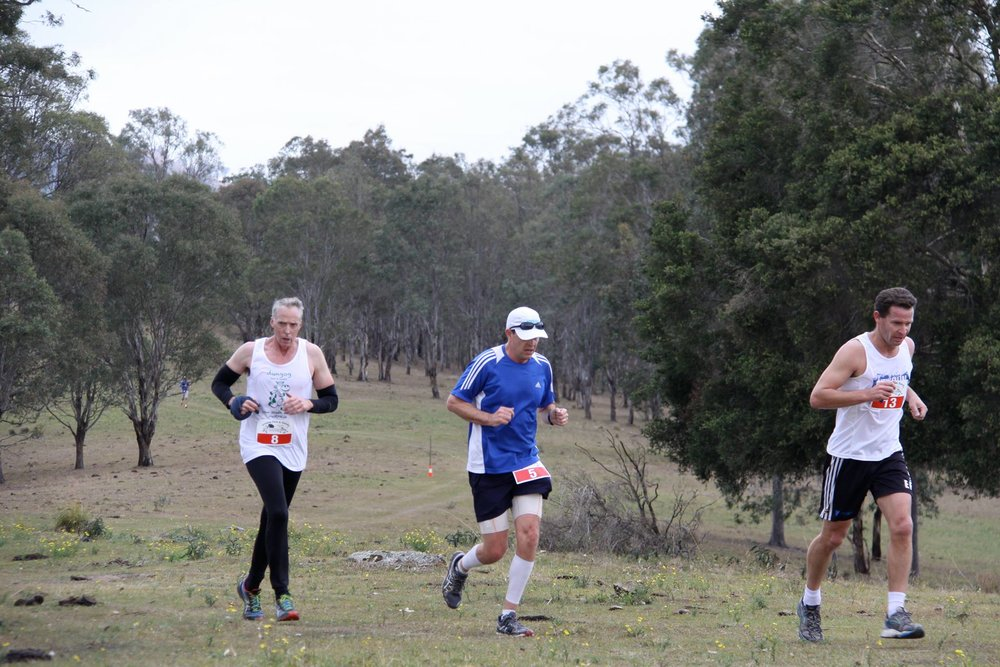 Runners in the 2017 Dash and Dawdle