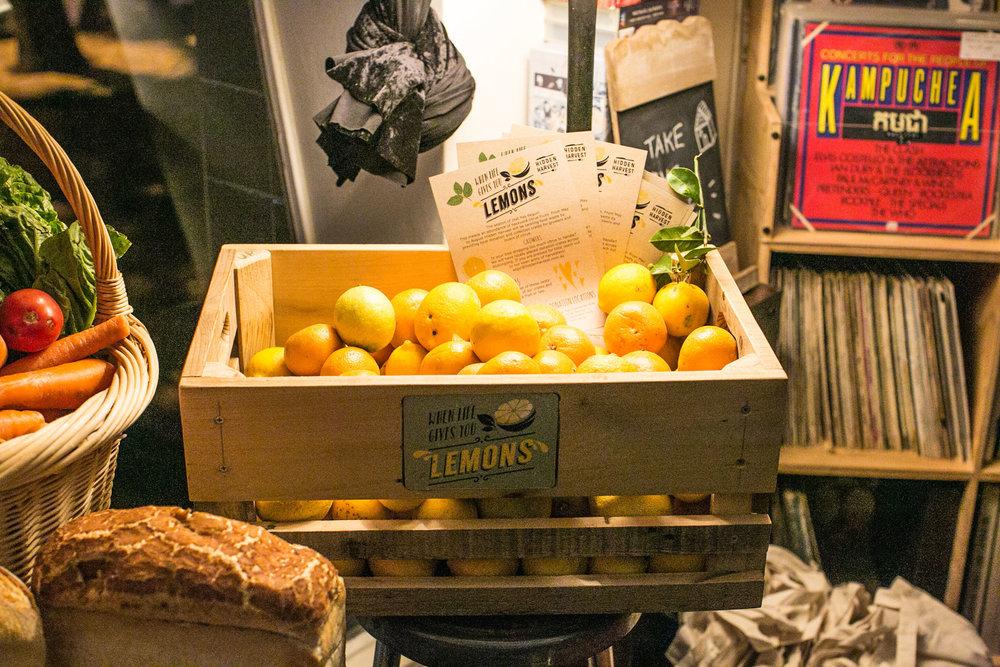 Hidden-harvest_lemons.jpg