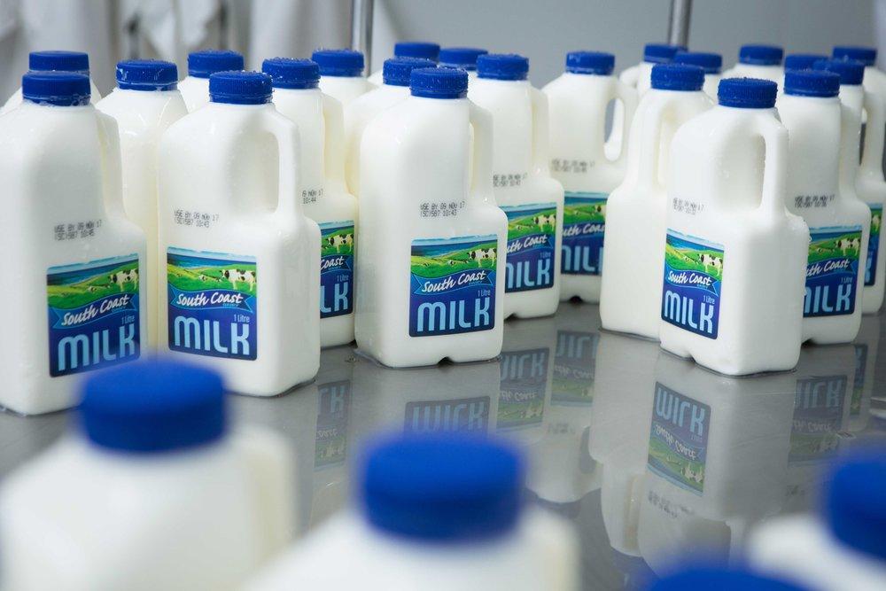 South-Coast-Dairy-9.jpg