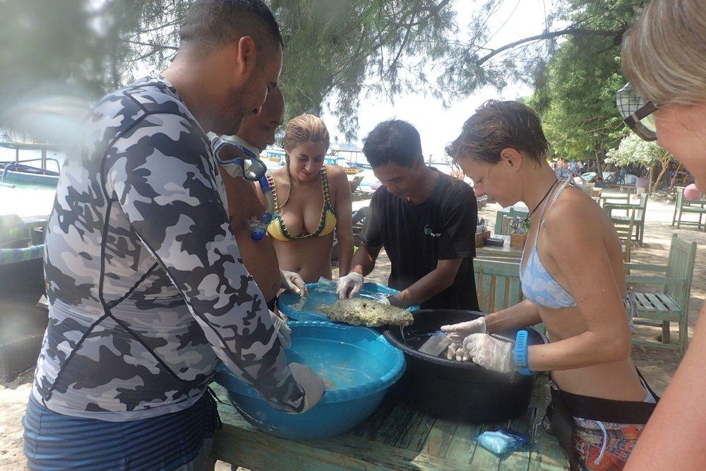 Help coral reef
