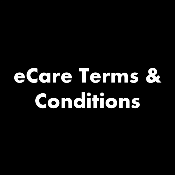eCaree Terms