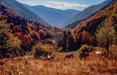Bulgaria-10.jpg