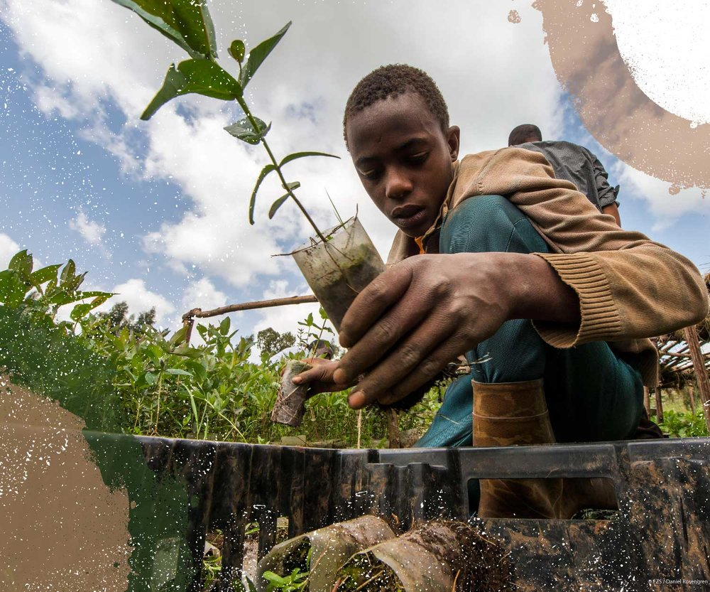 Protecting Futures - Conservation can be profitable. In Ethiopia's Bale Eco-Region, Farm Africa is helping farmers to secure bigger profits, while also protecting unique ecosystems and natural resources for generations to come.Learn more