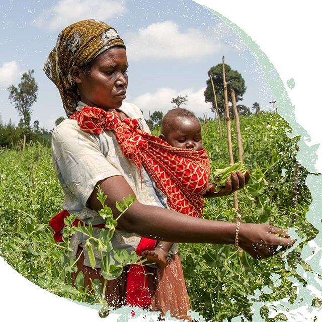 An increase to a woman's income of $10 achieves the same improvements in children's nutrition and health as an increase to a man's income of $110. When you empower a woman, you empower her children. #IWD2019 #InternationalWomensDay #WomensDay #FemaleFarmers #Mother #Family #Agriculture #ChefsForChange #Nutrition #Farming #Crops