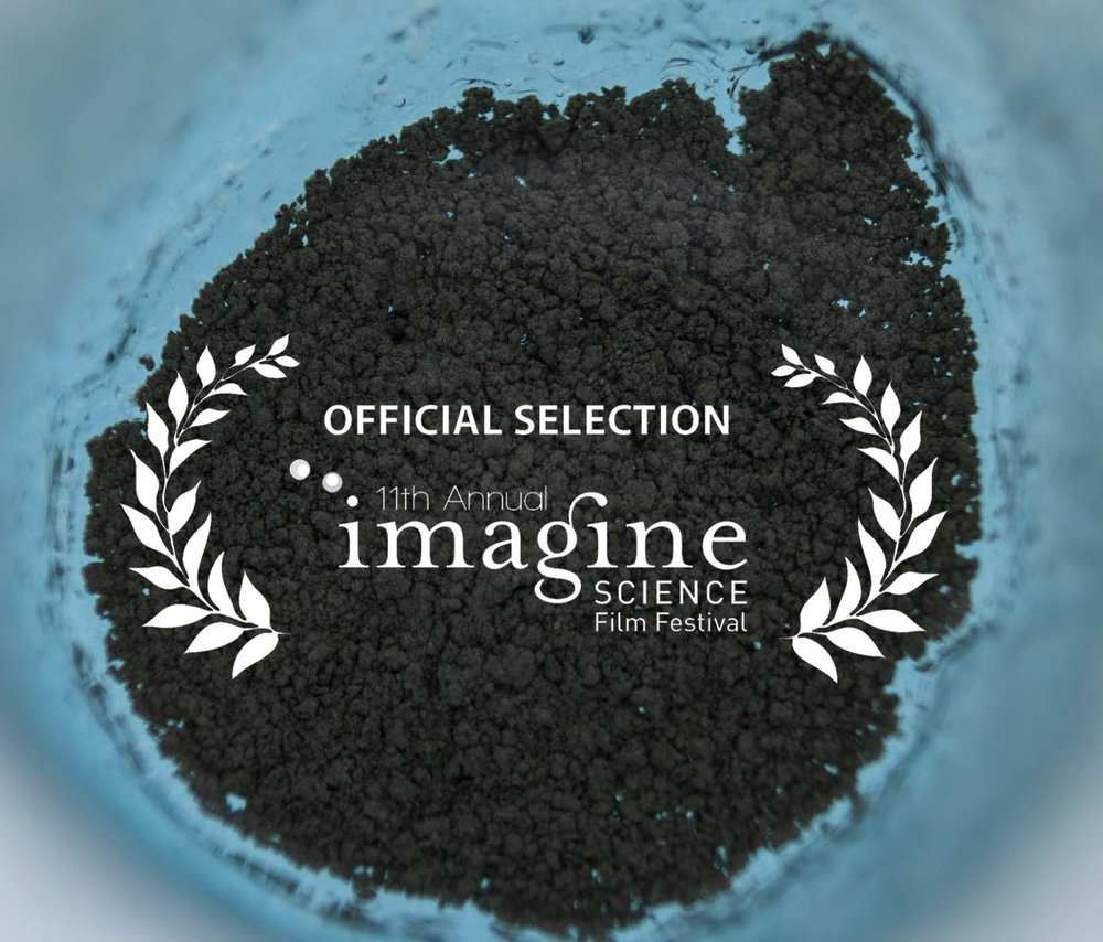 """We're happy to announce that our film 'Ice Alive' will be showing this October at the Imagine Science Film Festival 2018 in New York.The festival will run October 12 - 19 at venues throughout New York City, including American Museum of Natural History, Issue Project Room, The Rubin Museum, and the New School.  The festival is organised by Imagine Science Films, whose mission is to promote """"high level dialogue between scientists and film-makers"""" - deeply complementary with our ethos here at Ice Alive. As our co-founder and film-maker Eddie Frost says, """"if a scientist can describe their idea not only in fine detail but also in terms of wider themes and grand consequences - you've got yourself the basis of a great film"""".  For more information visit their  website ."""
