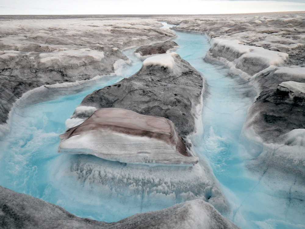 Microbially-darkened ice on the Greenland Ice Sheet in 2014. The darker the ice, the faster it melts - this ice looks like this over thousands of kilometers (ph J Cook)