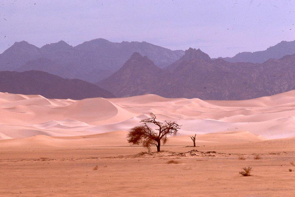 Tenere Desert -