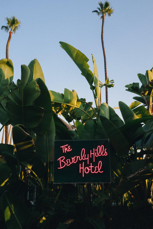 LOUIS A W SHERIDAN - BEVERLY HILLS HOTEL – LOS ANGELES – FILLER - 2018-1.jpg