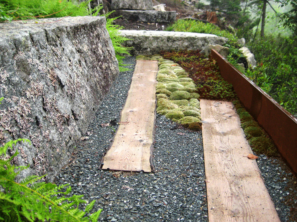 White Cedar  Pavers Northeast Harbor, ME