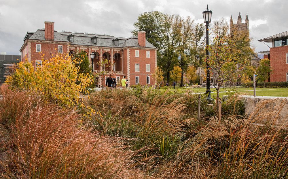 Bioswale  Williams College Williams, MA