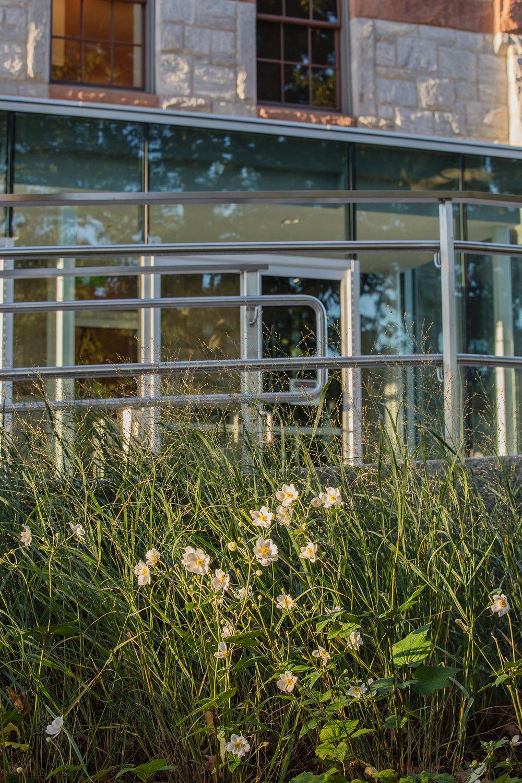 UMA Chapel Plants 2.jpg
