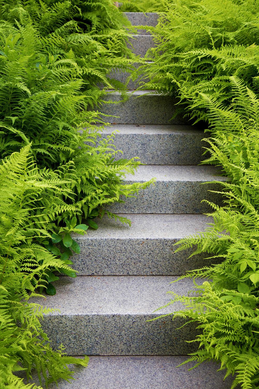 Granite Steps  Cove House Woods Hole, MA