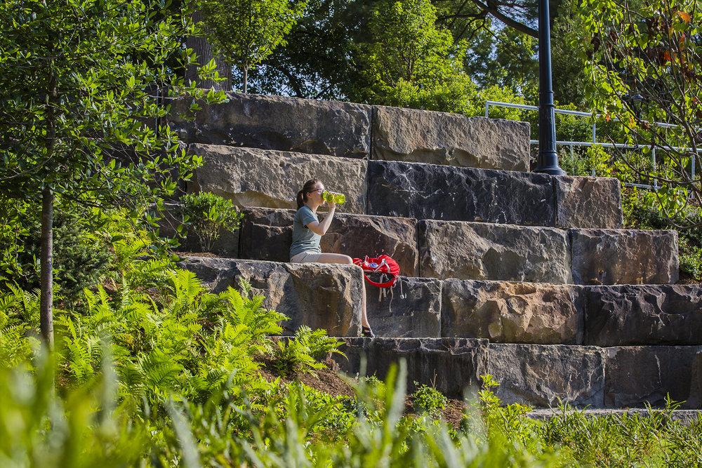 Pulaski Park 24 ND.jpg