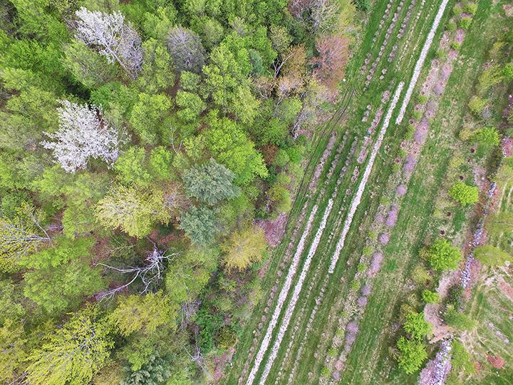 Aerial_Thompson_lr.jpg