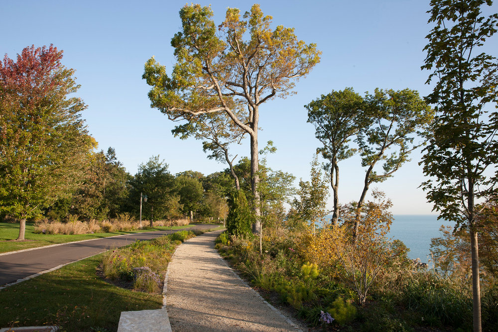 Forest Park 21 SS.jpg