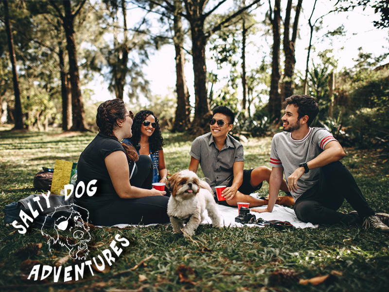 PET FRIENDLY - Falmouth Center is pet friendly! Take your pet on a stroll through the Village and dine outside or walk the trail system which connects to a larger network of area trails.